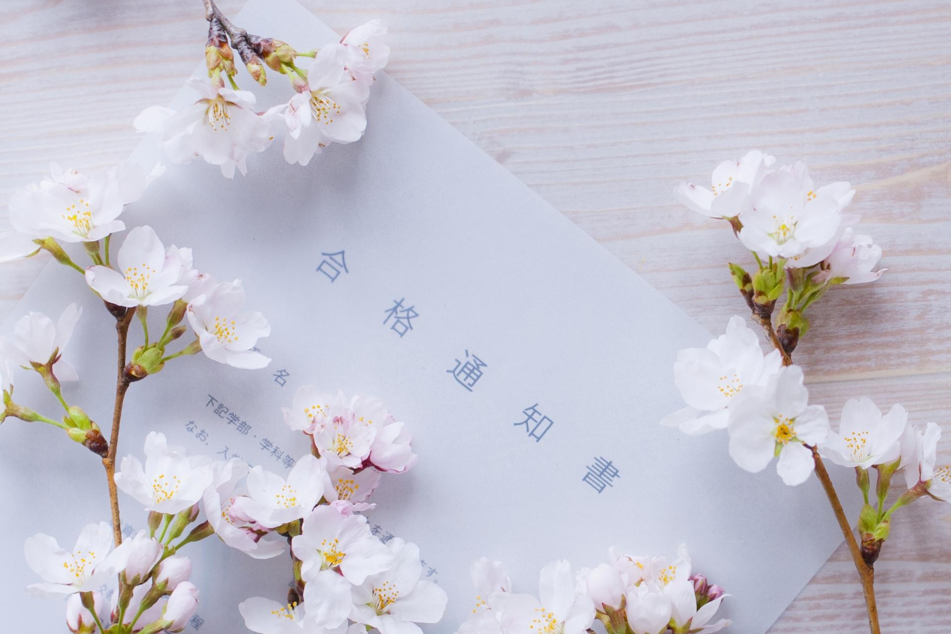 桜と合格通知
